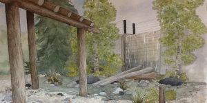 Waterfall Revitalization Project