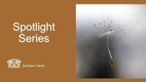 Xwi7xwa Spotlight Series