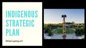 Indigenous Strategic Plan